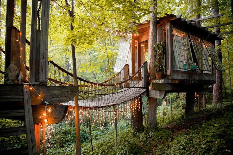 3055586-slide-s-1-treehouse